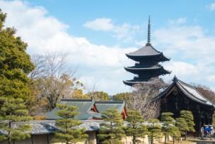 京都旅行で楽しんでいたら、60万円の学費が免除された話!